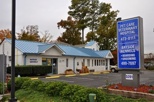 vet in virginia beach